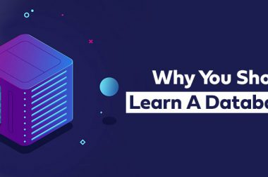 Why you should learn a Database?
