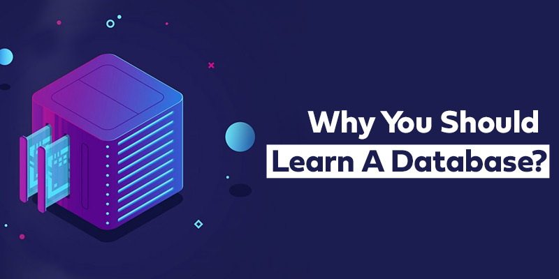 Why you should learn a Database