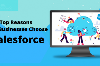 Top Reasons Why Businesses Choose Salesforce